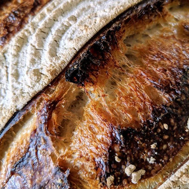 My weekly loaf - - #sourdough #realbread #realbreadireland #closeup #teampixel #teampixel2 #slowfood #fermentedfoods #breadobsessed #fromscratch #crusty #crumbshot