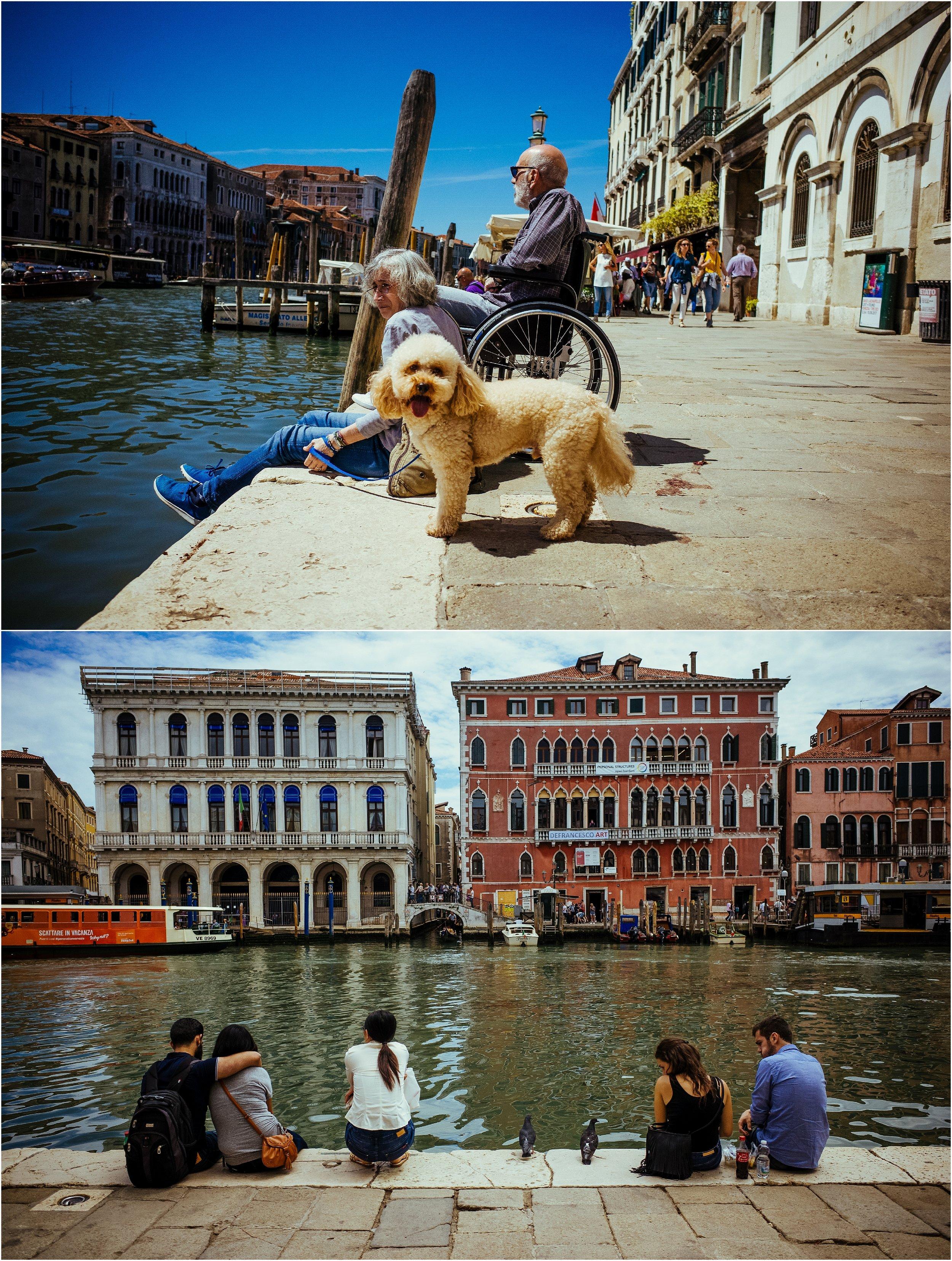 dogs in venice_0046.jpg