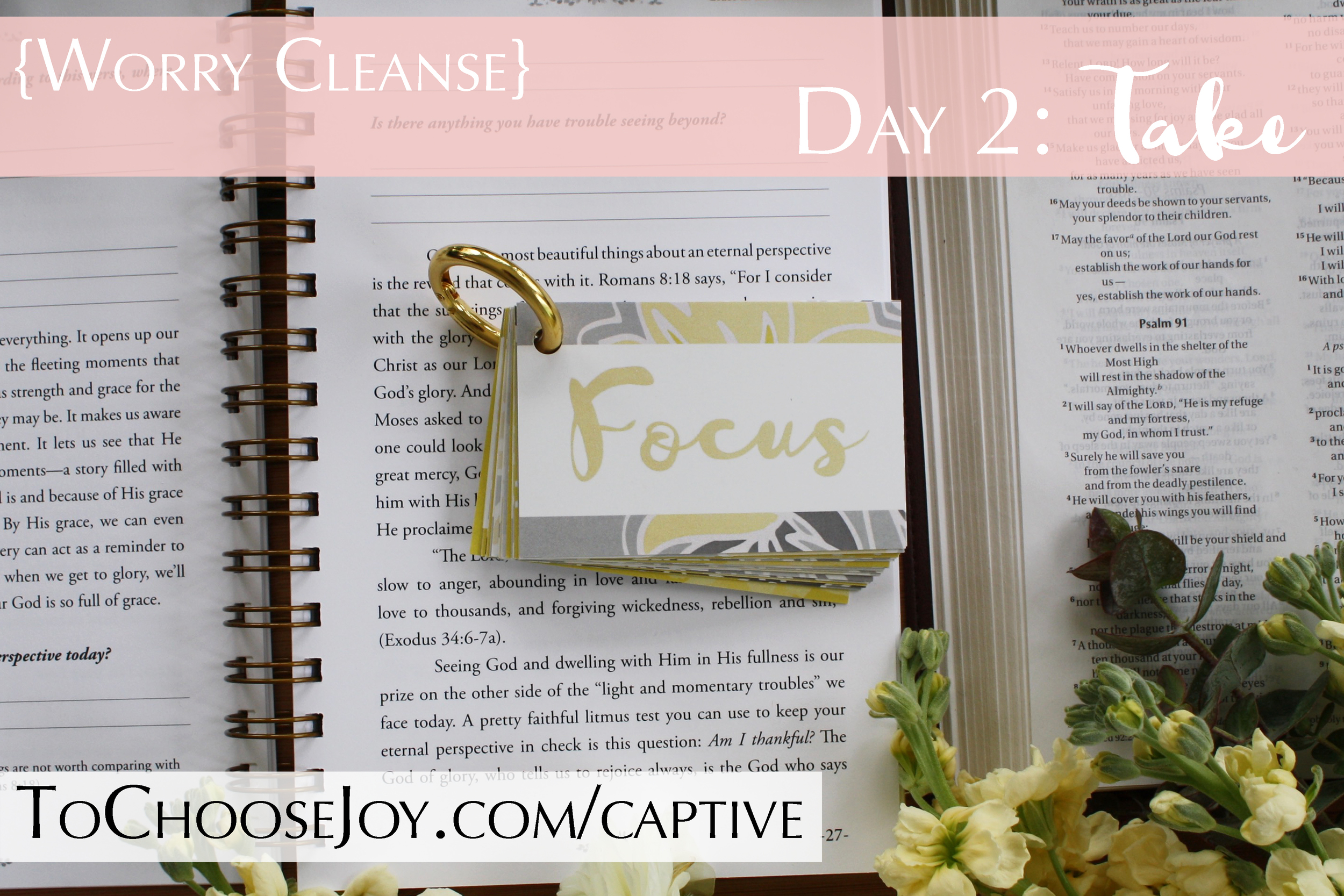 To Choose Joy_Bible Study_Worry Cleanse_Captive Cards_Becky Bennett_Day 2