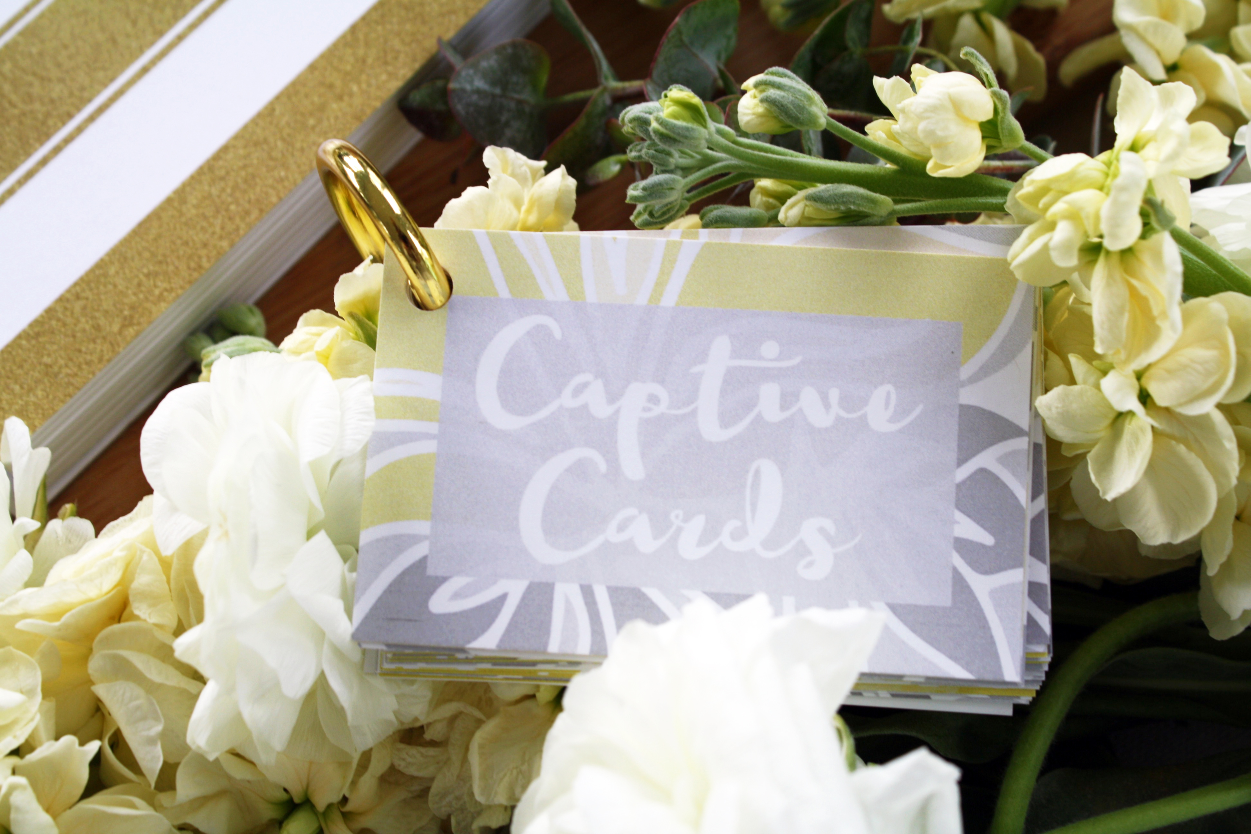 --> Captive Cards <--