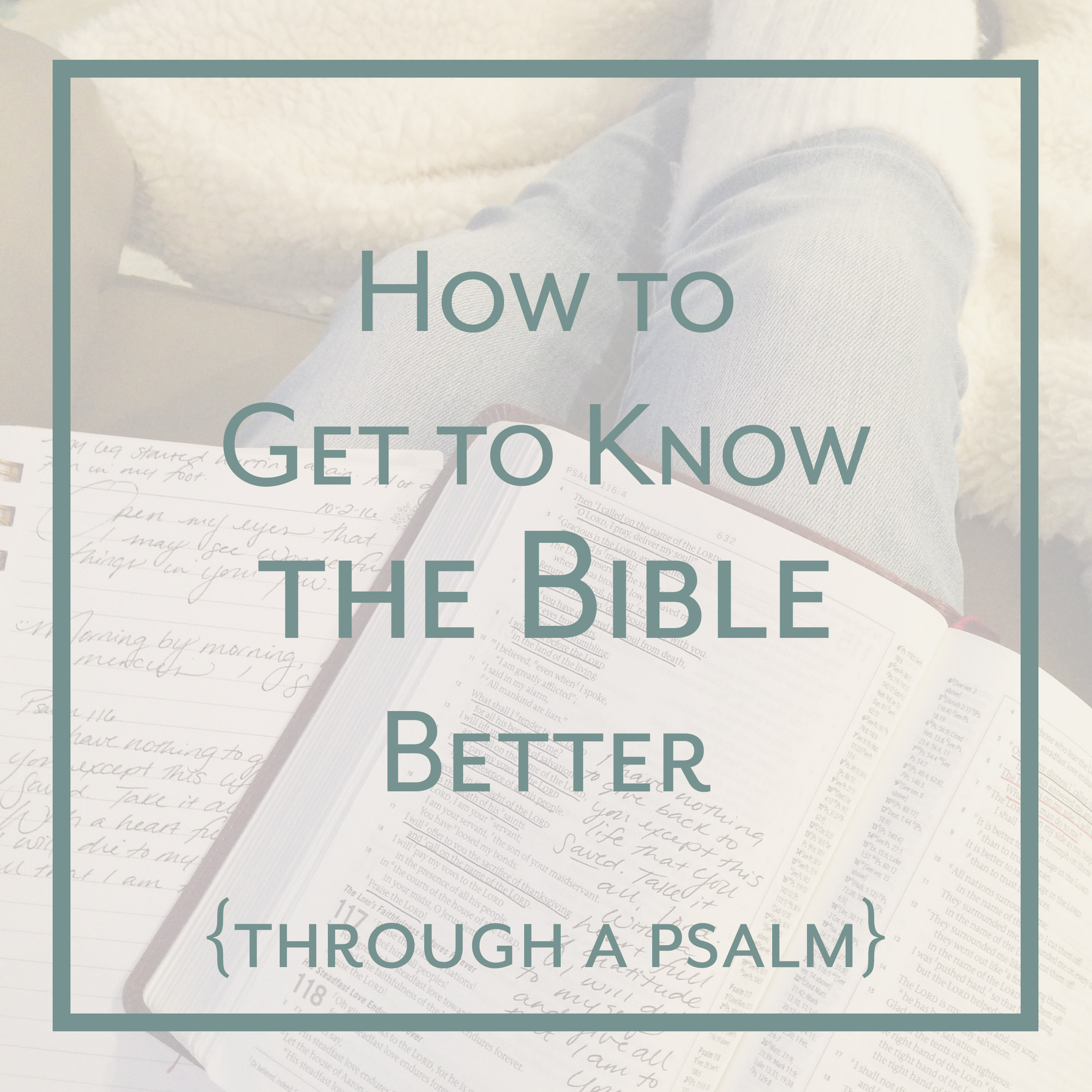 How to Get to Know the Bible Better_Choose Joy Bible Study for Women_Psalms