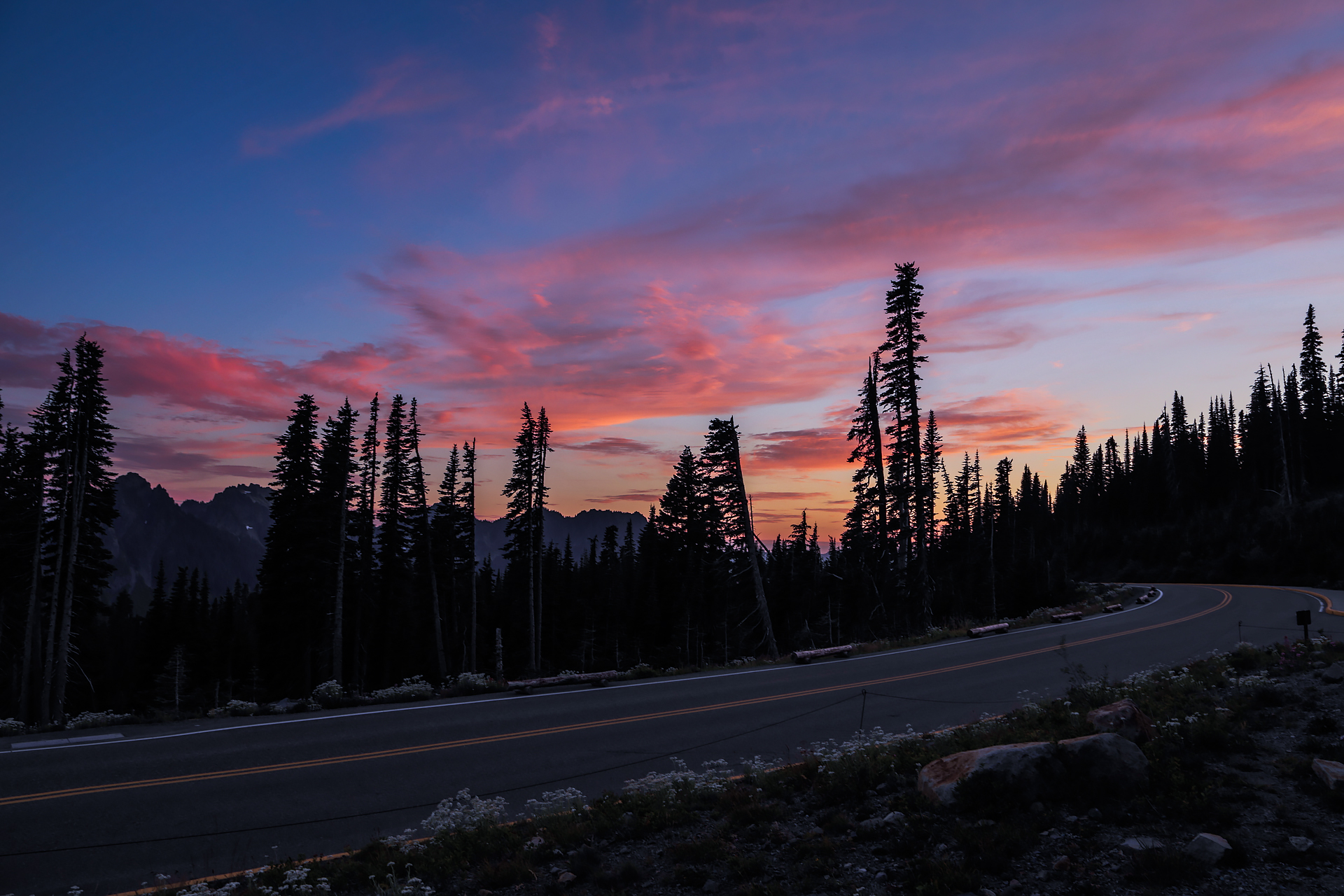 20130821-Mount-Rainier-Day-1-219.jpg