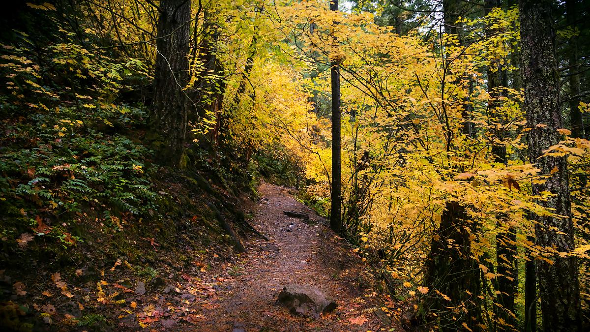 Rattlesnake-Ridge-022-Edit.jpg