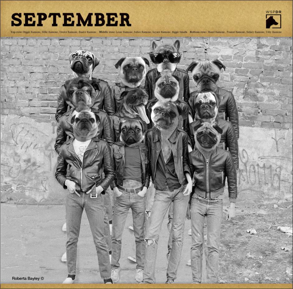 CalendarPicsSeptember.jpg