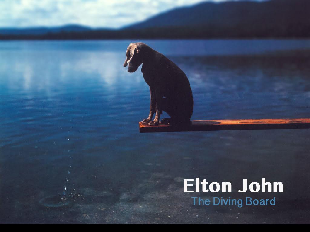 Divingboard1.jpg