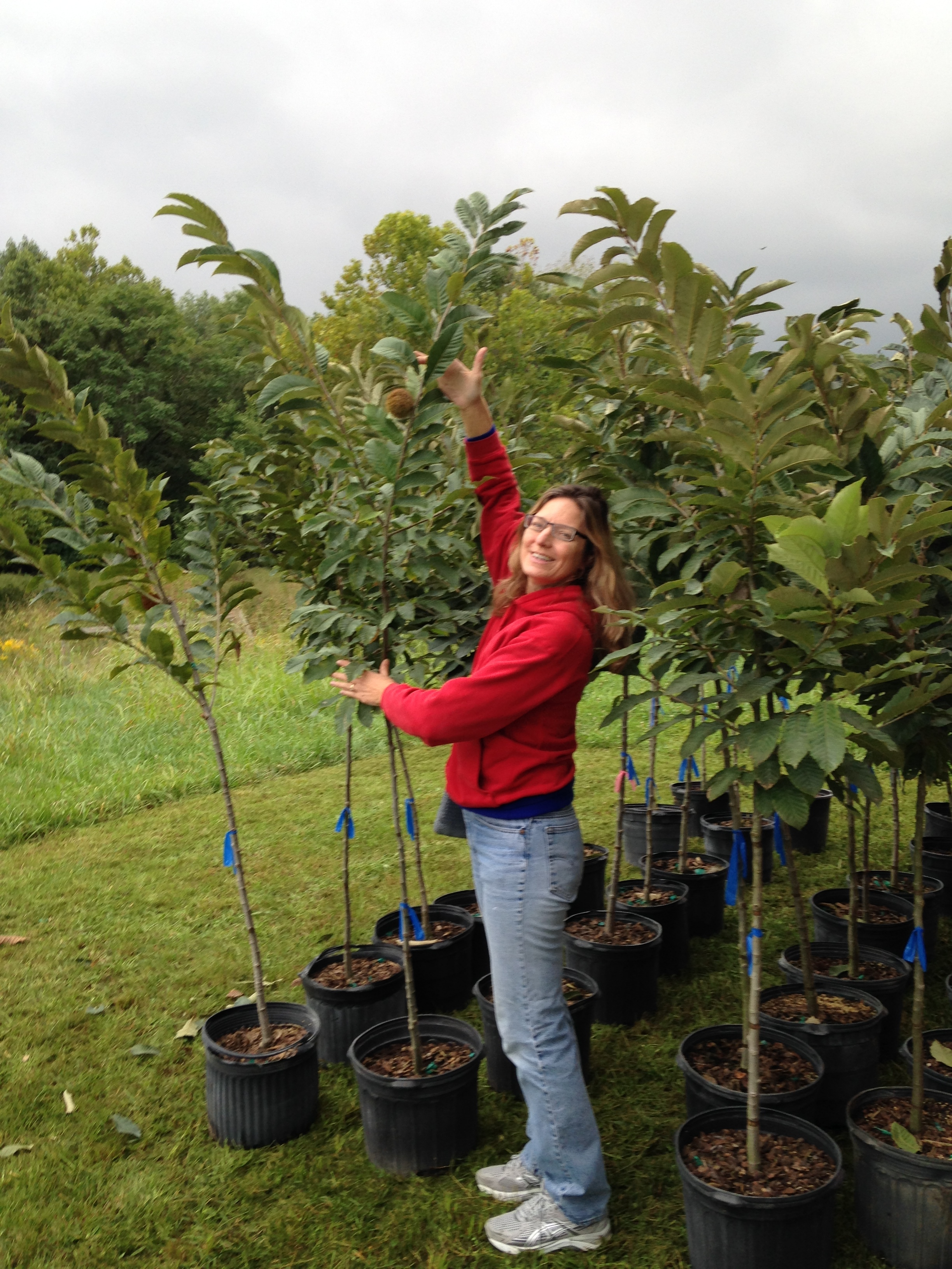Lenore Baker With Her Chestnut Trees--Preparing to Plant
