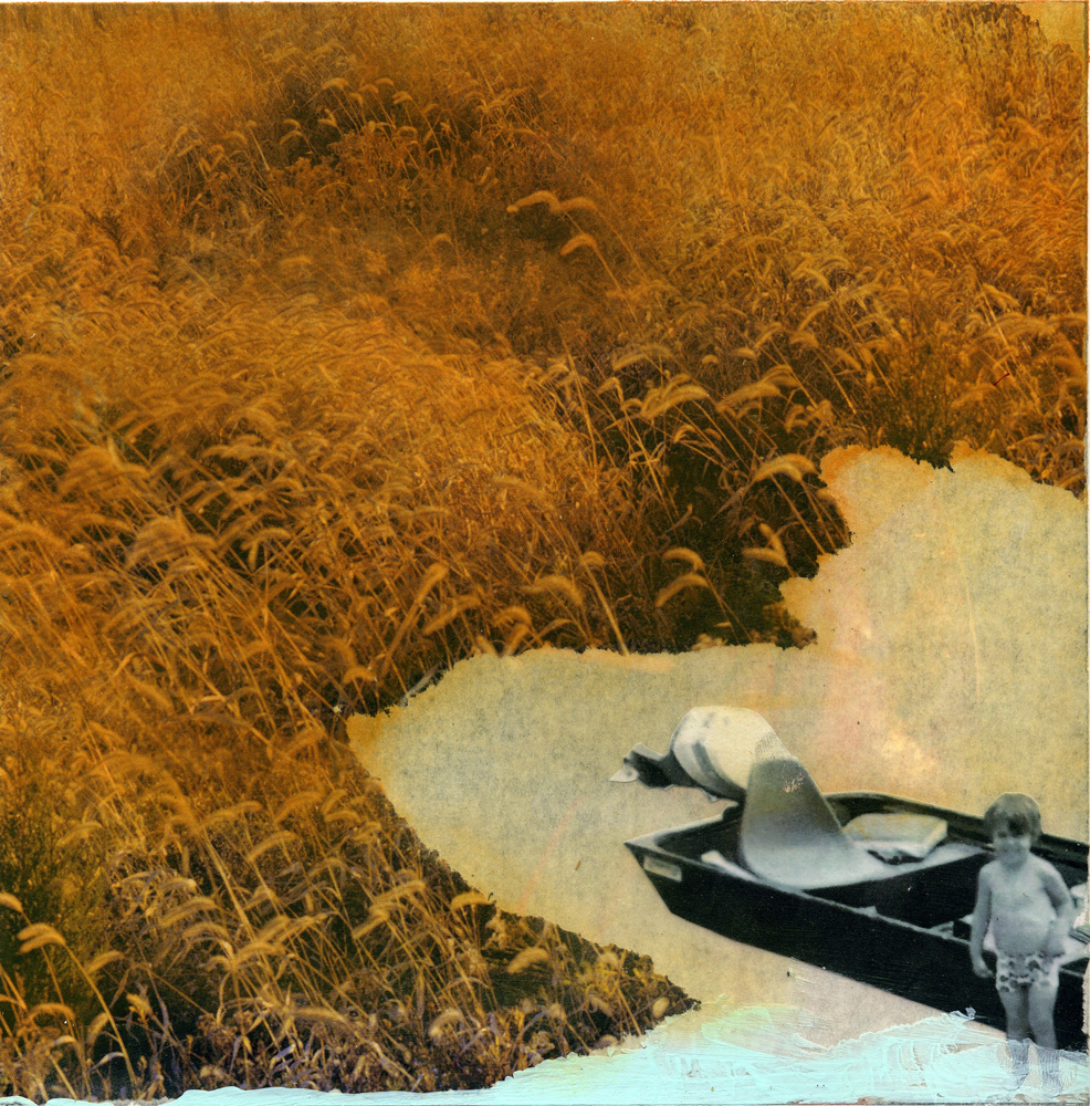 Wheat-chaf