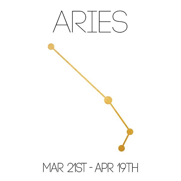 Aries_About_Website-01.jpg