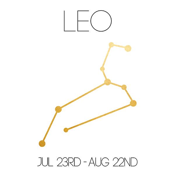 Leo_About_Website-01.jpg