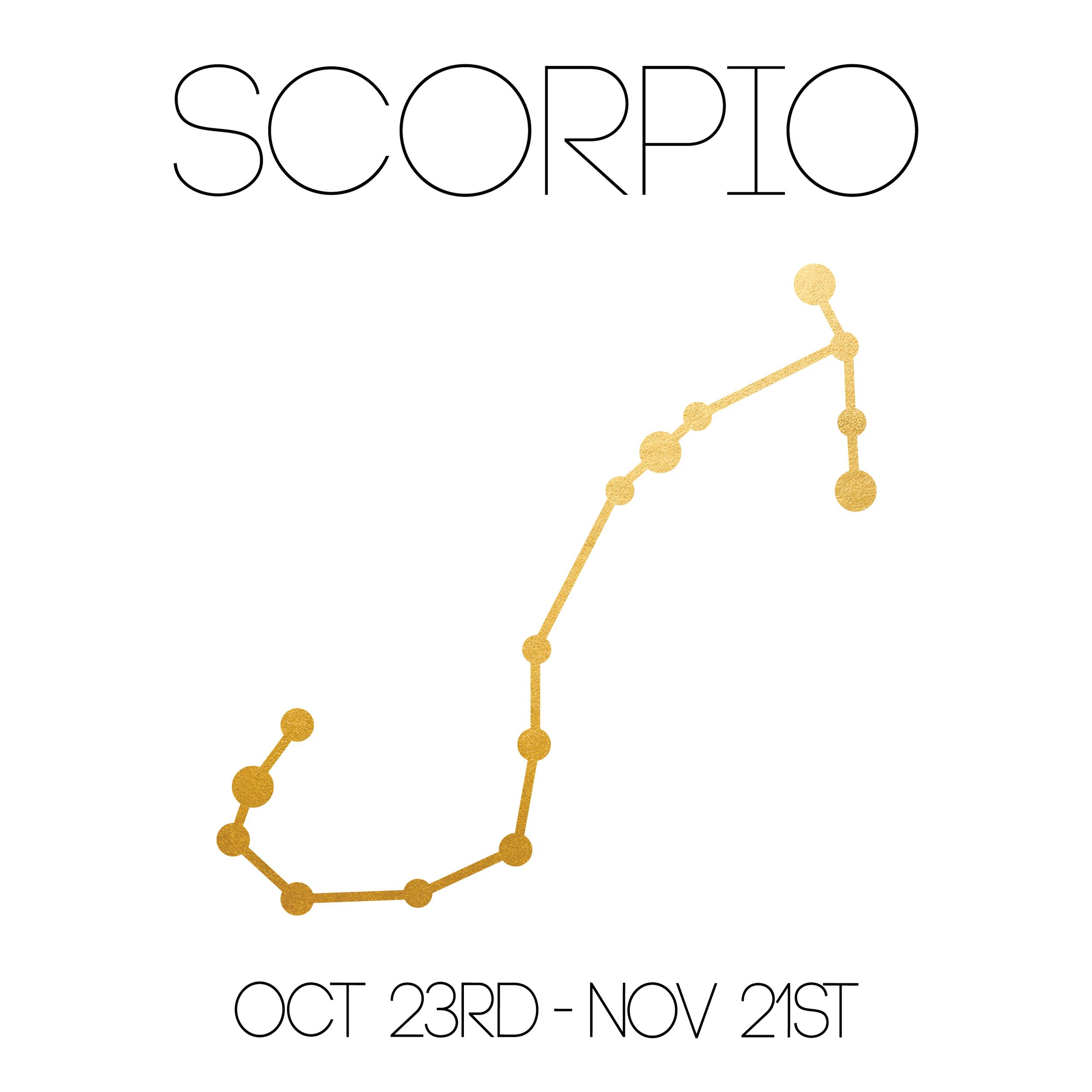 Scorpio_About_Website-01.jpg