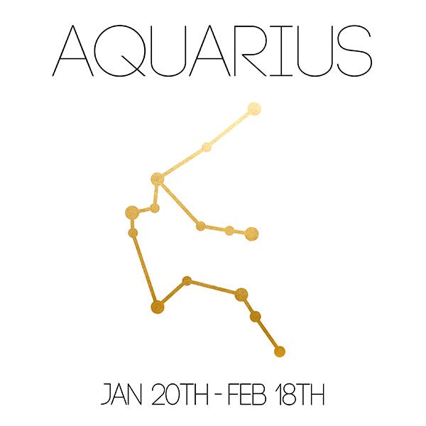 Aquarius_About_Website-01.jpg