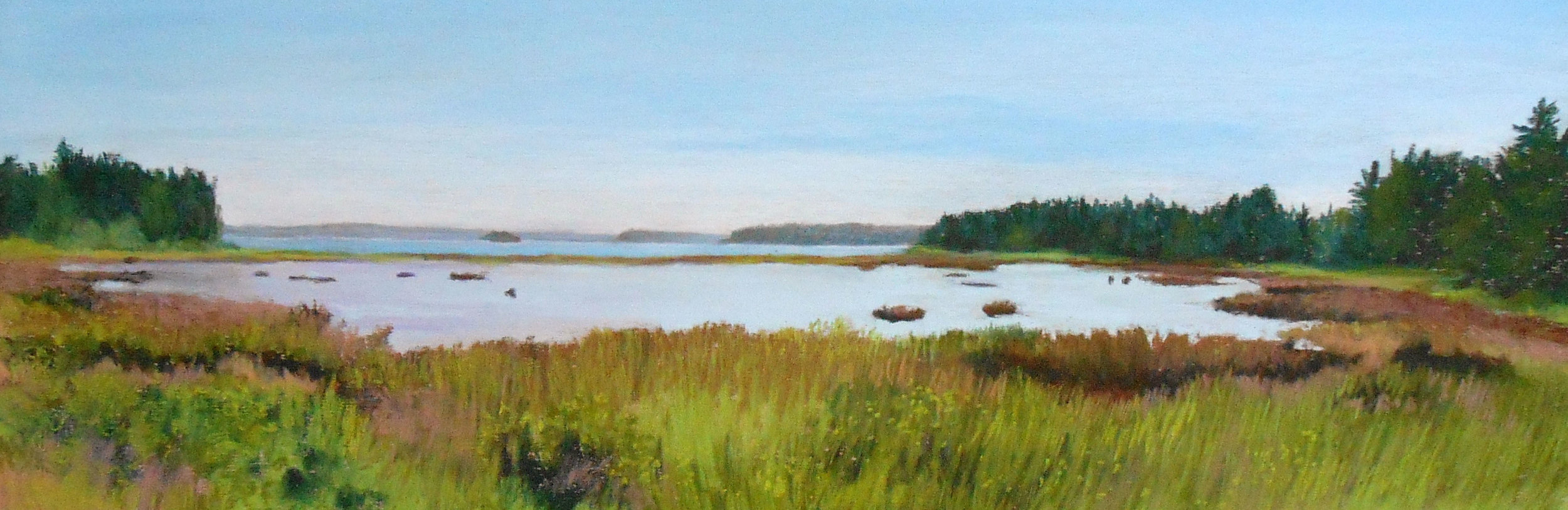 Salt Marsh on Deer Isle, Maine