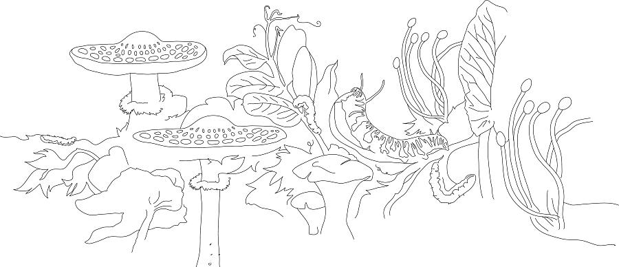 pod_mushroom.jpg