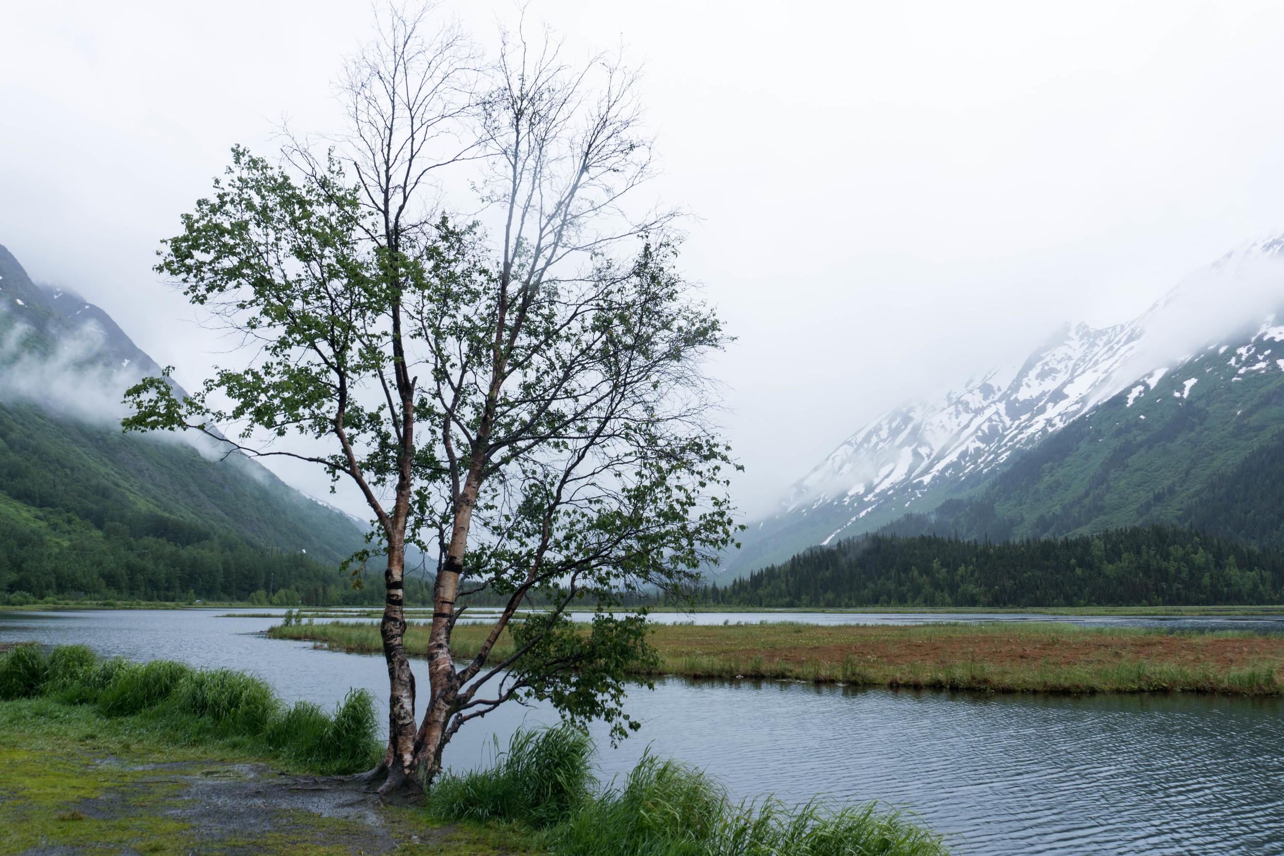LLV_Alaska-9.jpg
