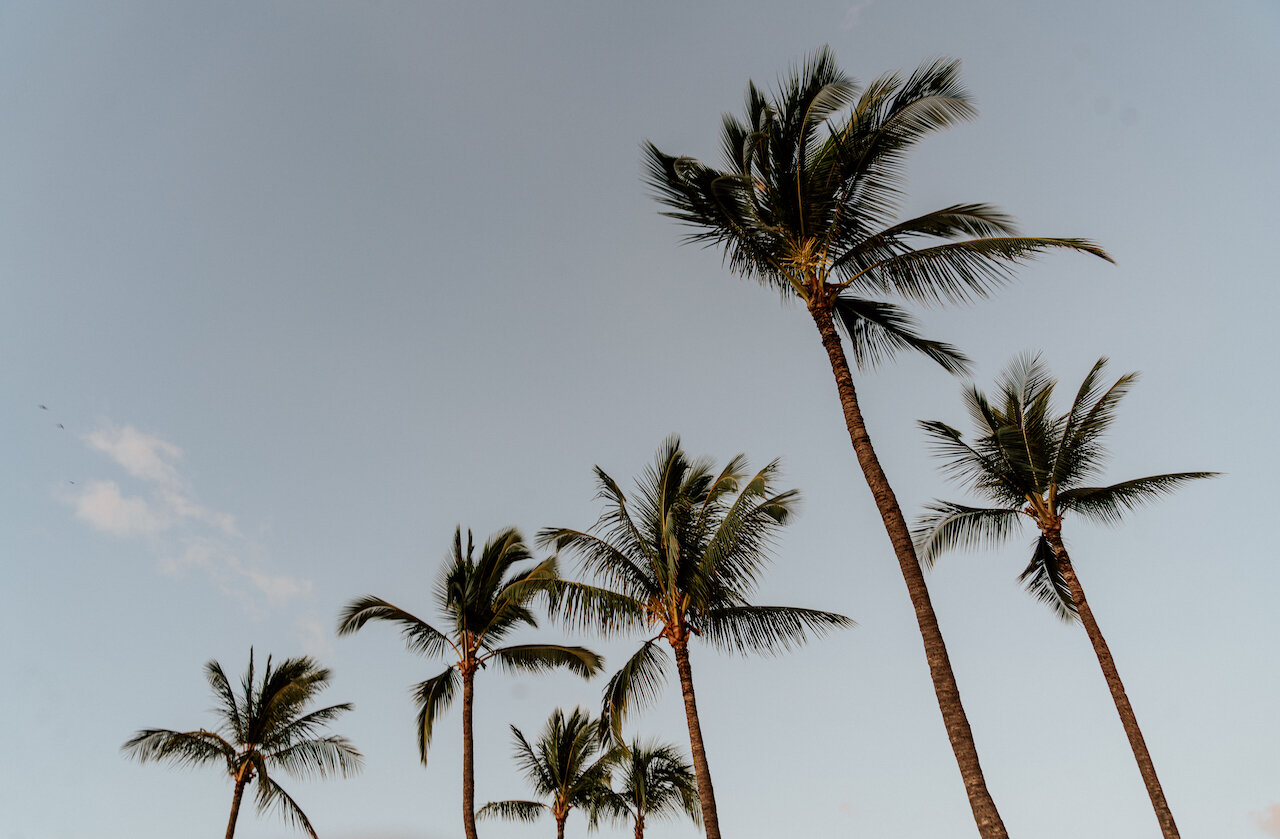 5 Relaxing Things To Do In Hawaii