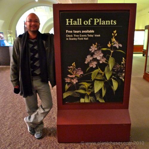 chicago-plants.jpg