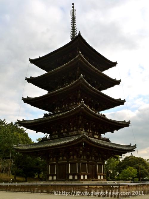 japan-pagoda-nara.jpg