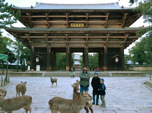japan-todai-ji-nara-1.jpg