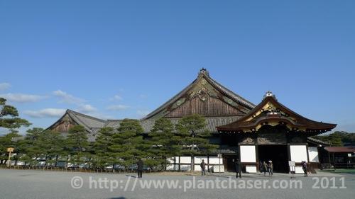 kyoto-nijo-ninomaru-5.jpg
