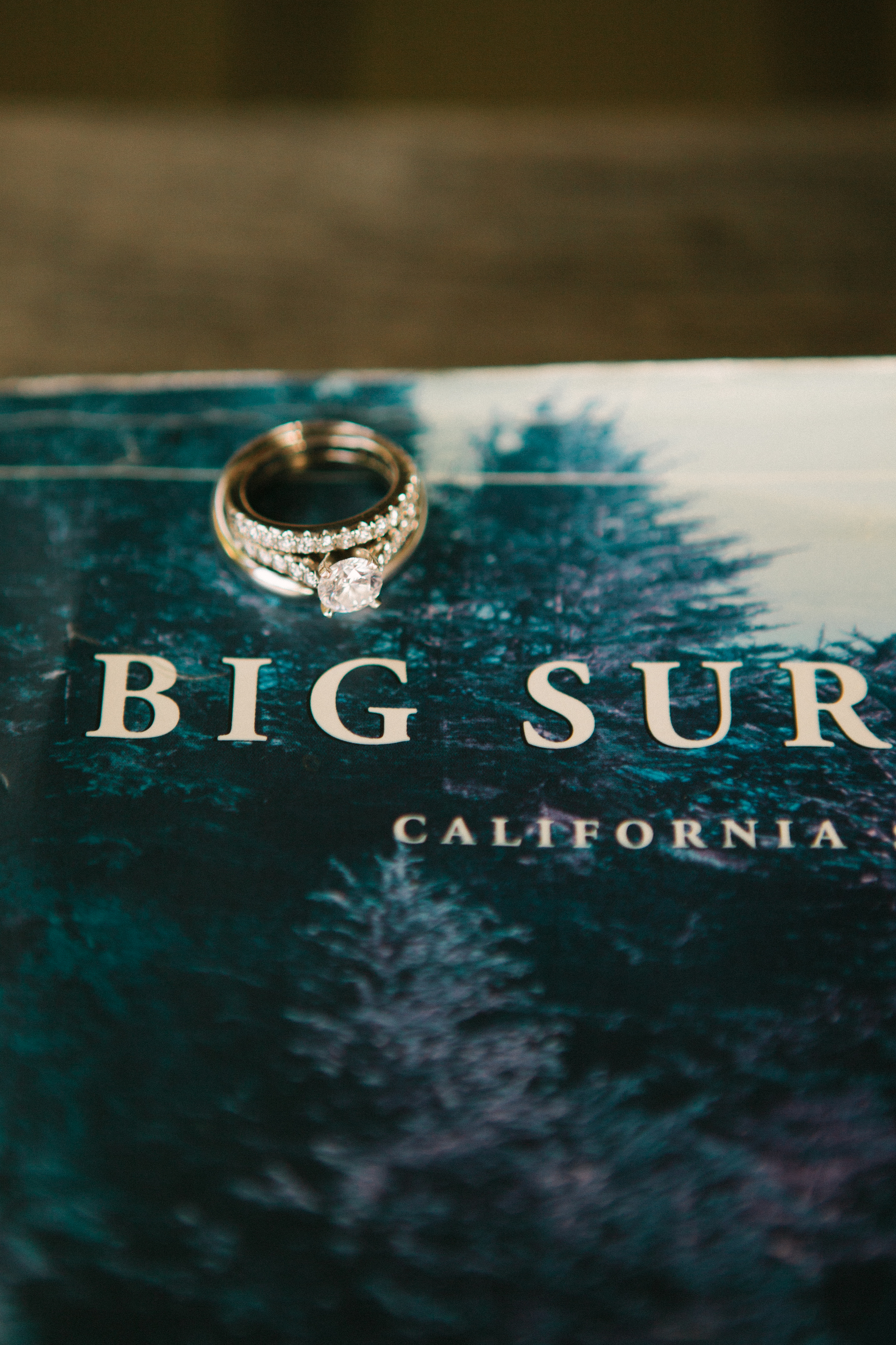 KristinMoorePhoto-Big-Sur-Wedding-House-of-Wind-and-Sea