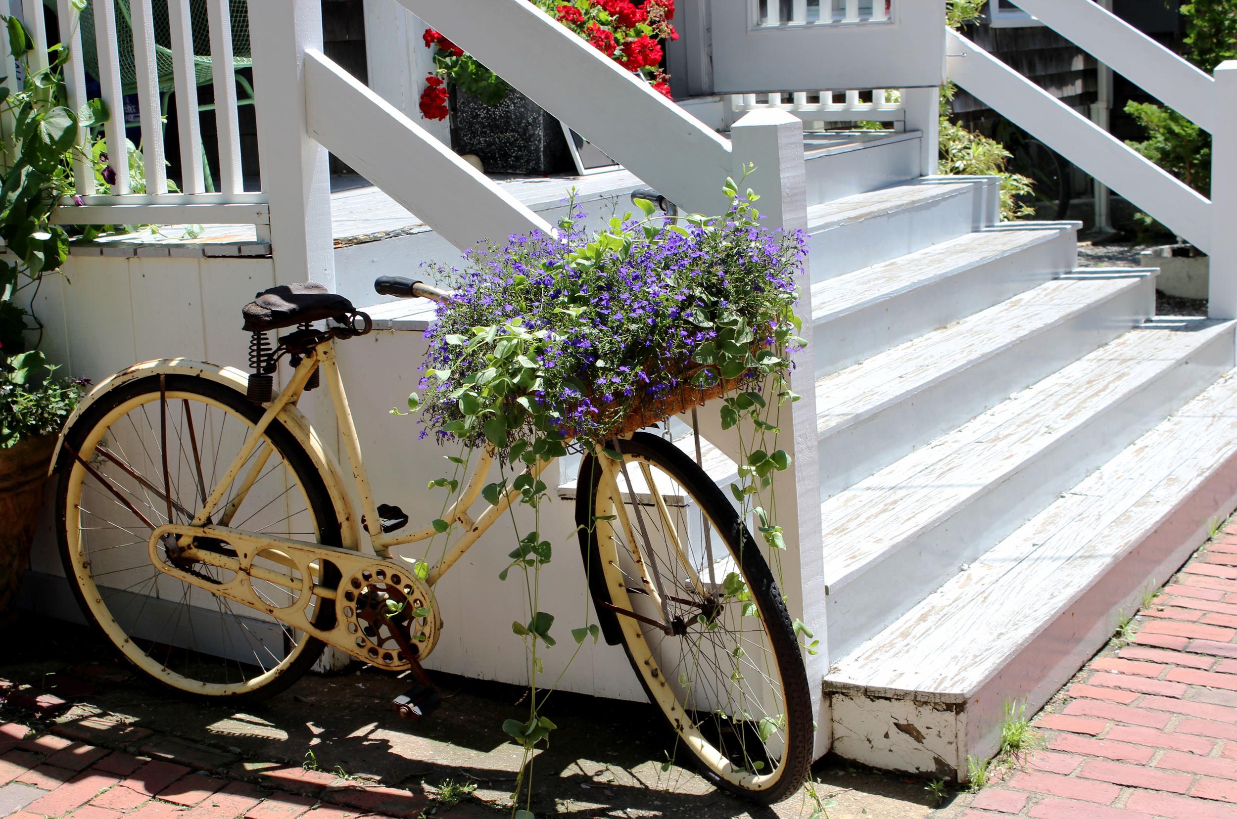 bike basin.jpg