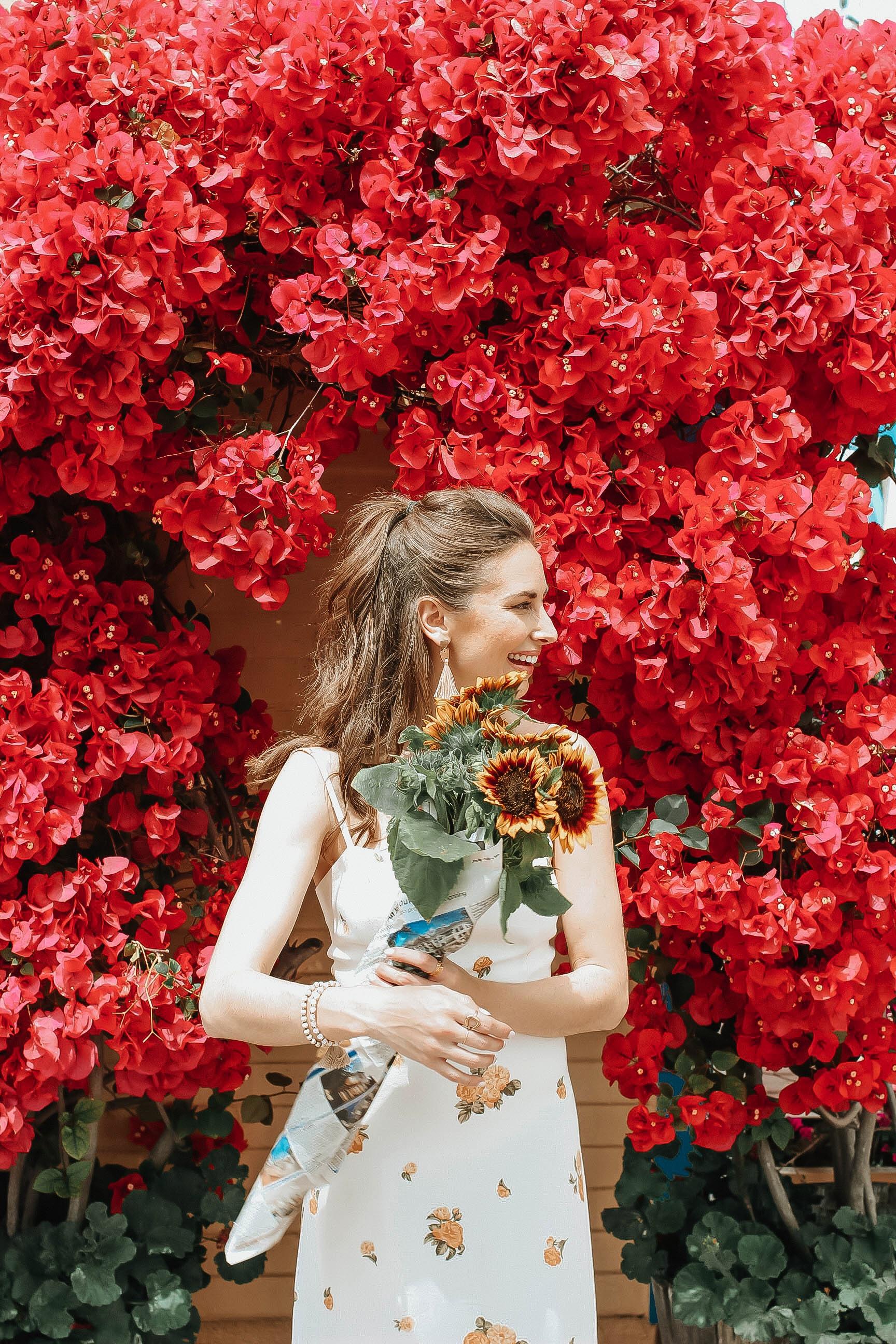 flower on flower.jpg