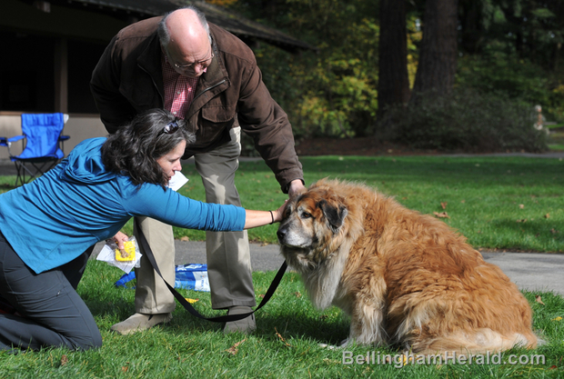 a chow reluctantly receives his blessing