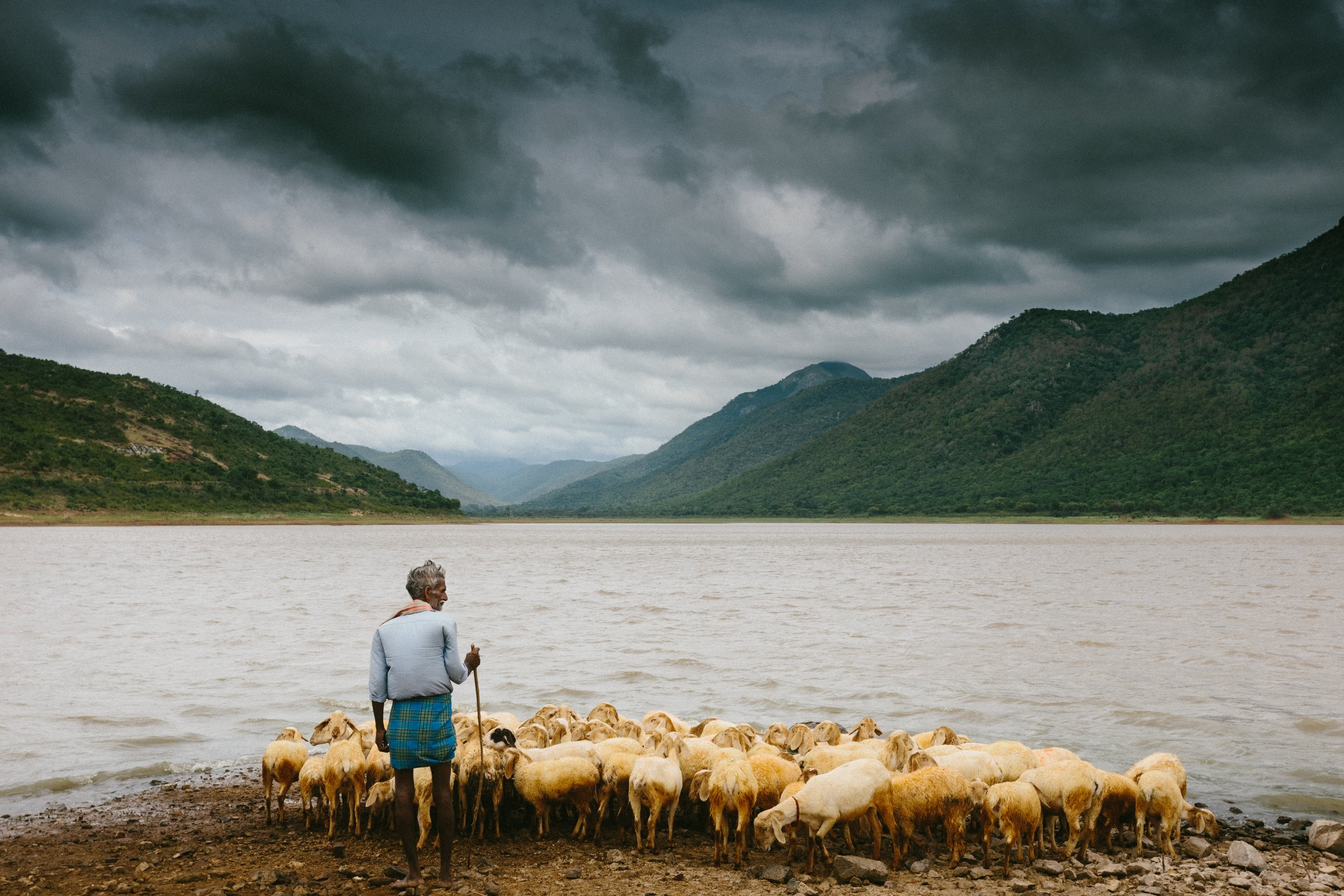 Photo by  joseph d'mello on  Unsplash