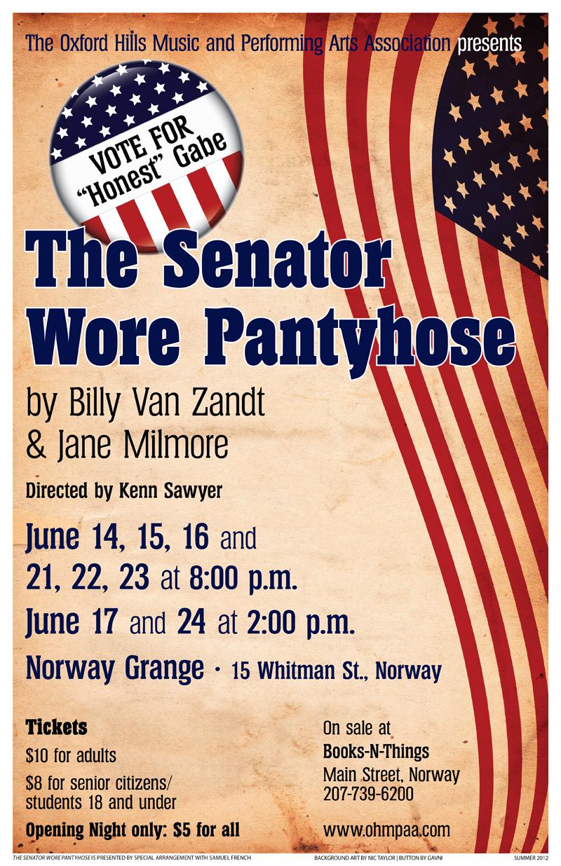 The Senator Wore Pantyhose poster