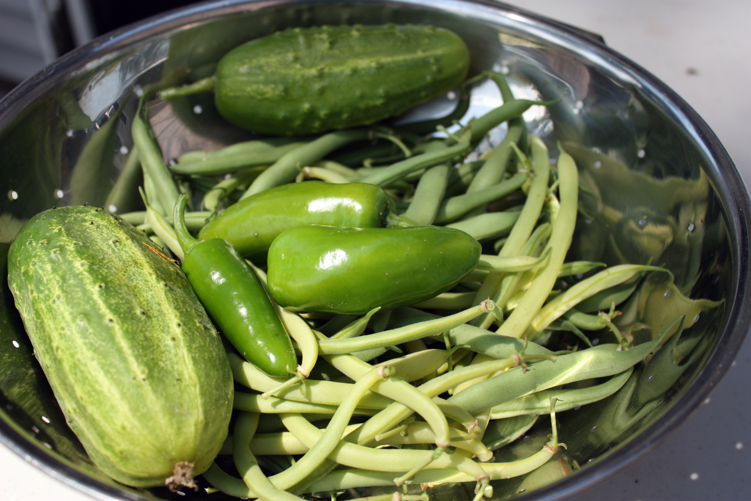 A study in green: cucumbers, beans and jalapenos.