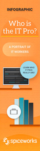 Spiceworks-Infographic-IT-Ad-160x600.jpg