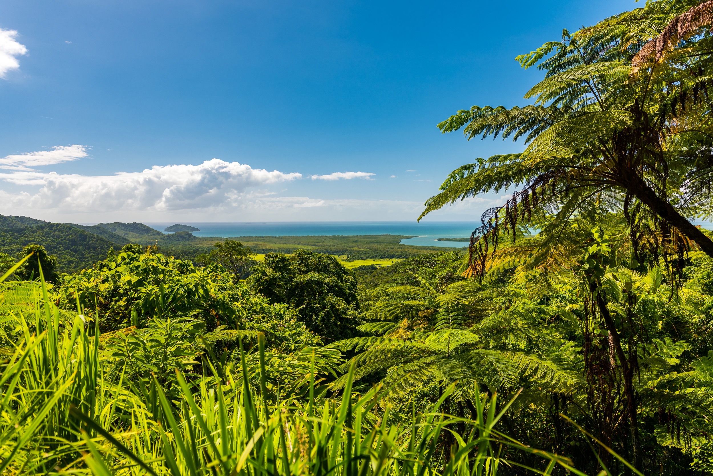 cape-tribulation-australia-2.jpg