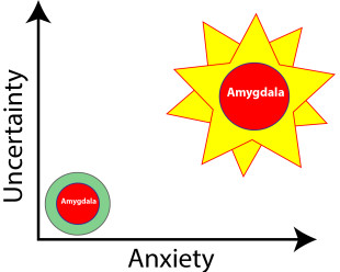 Anxiety Future Uncertainty