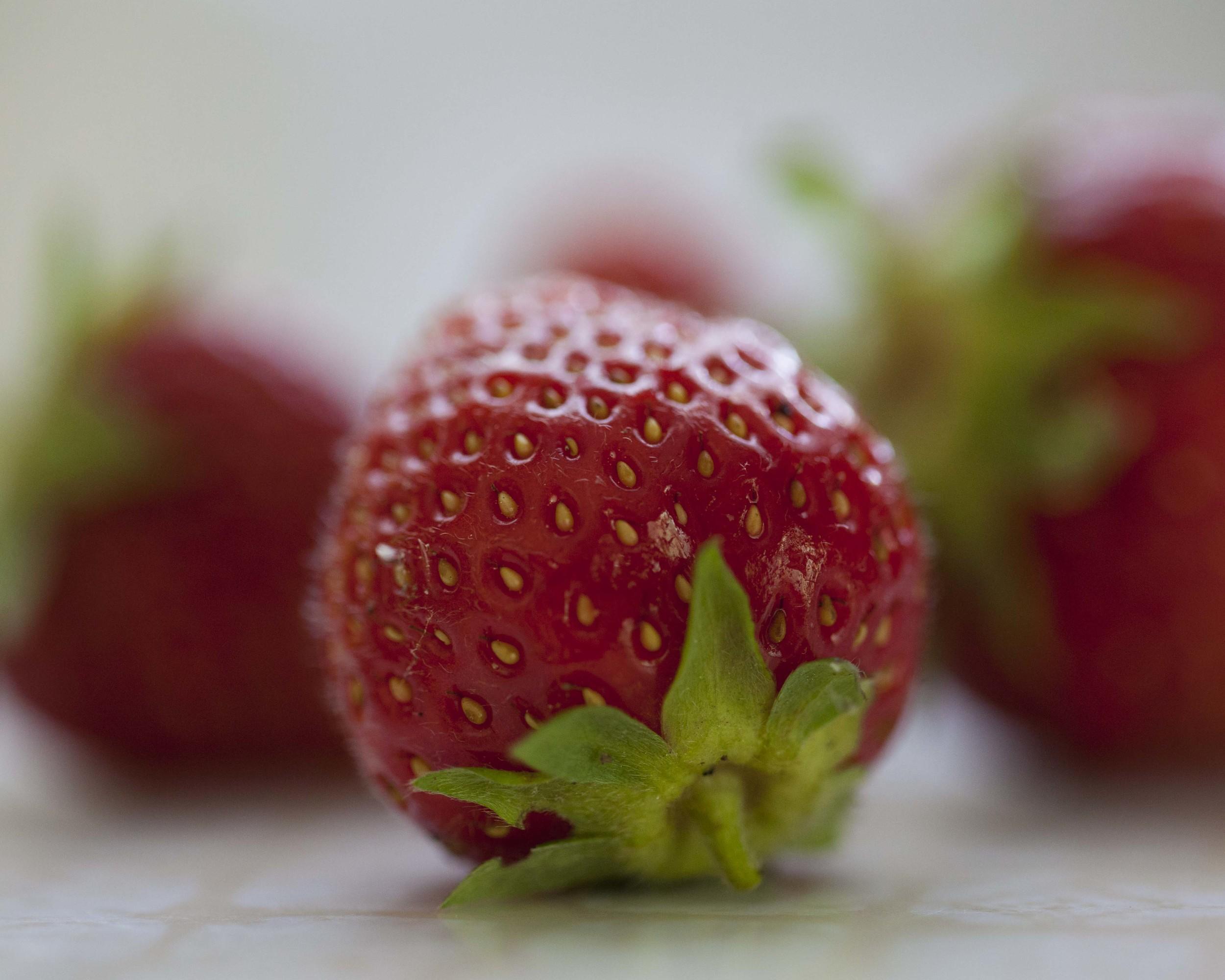garden stawberry.jpg