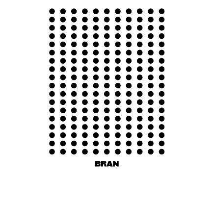 bran.png