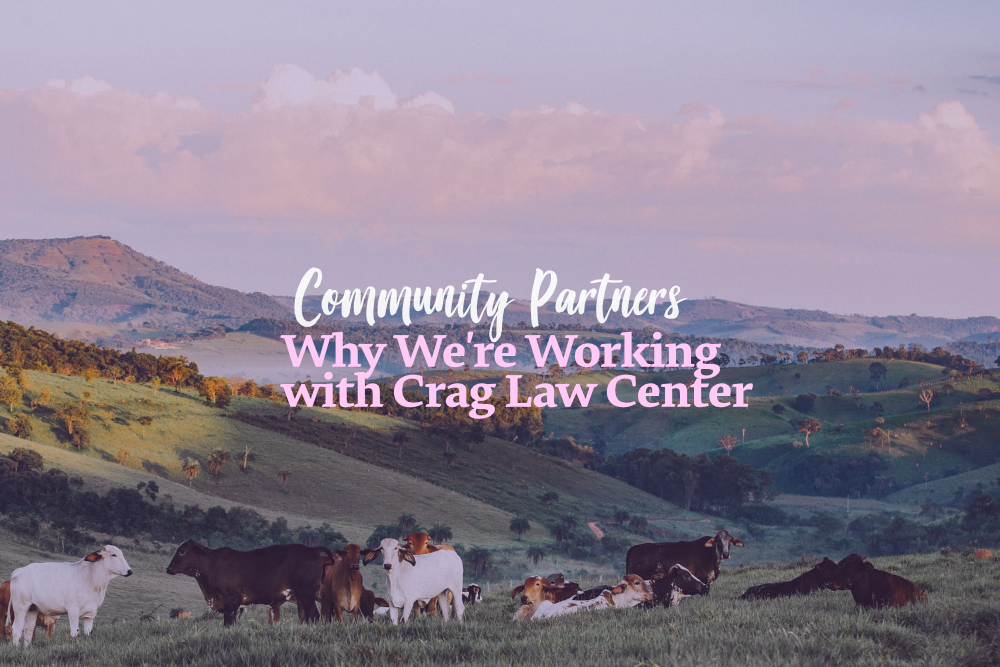 marmoset-community-partners-crag-law-center.png