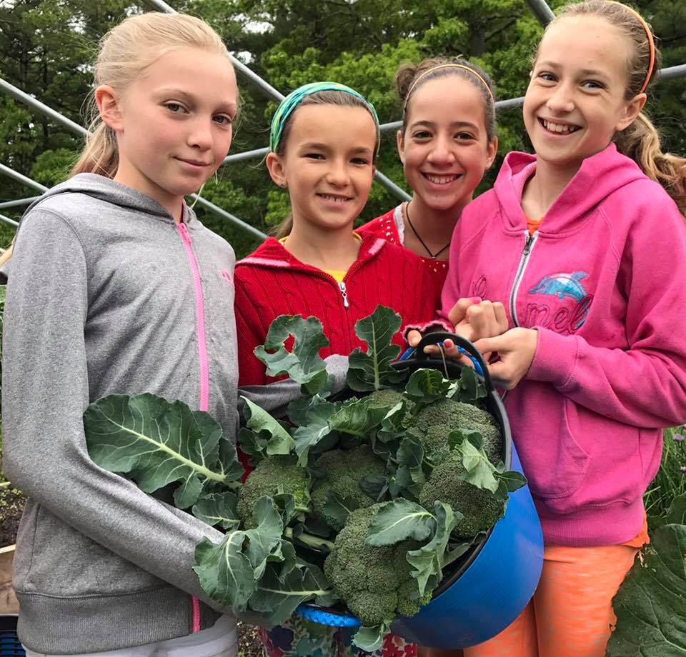sunhouse broccoli class5 girls.jpg