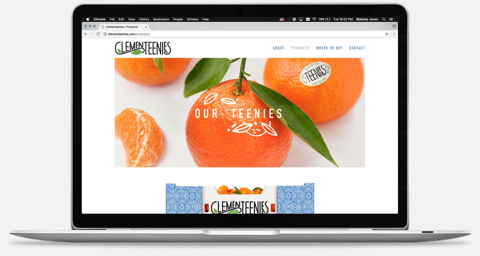 clementeenies_webpage2.jpg