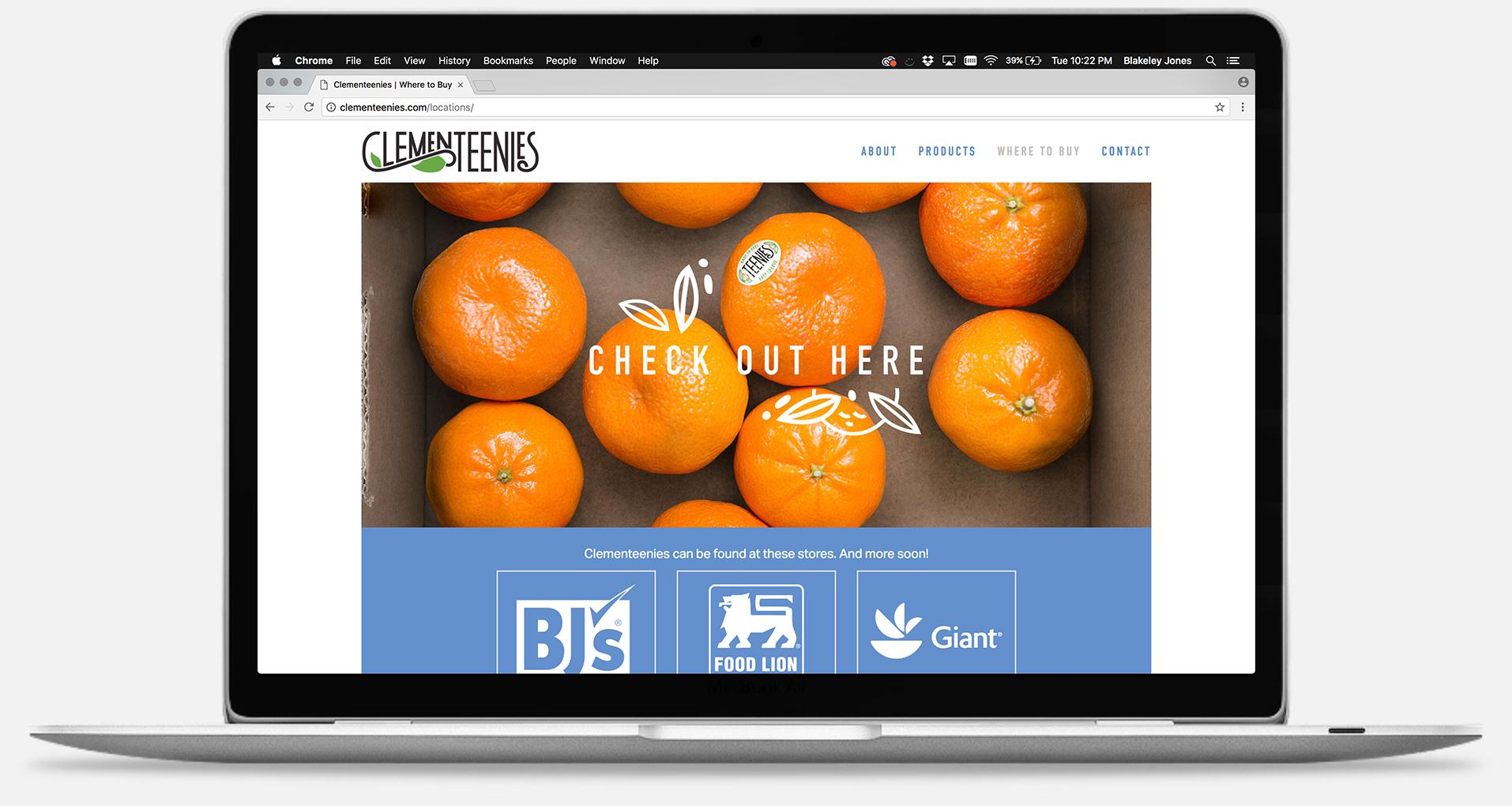 clementeenies_webpage3.jpg