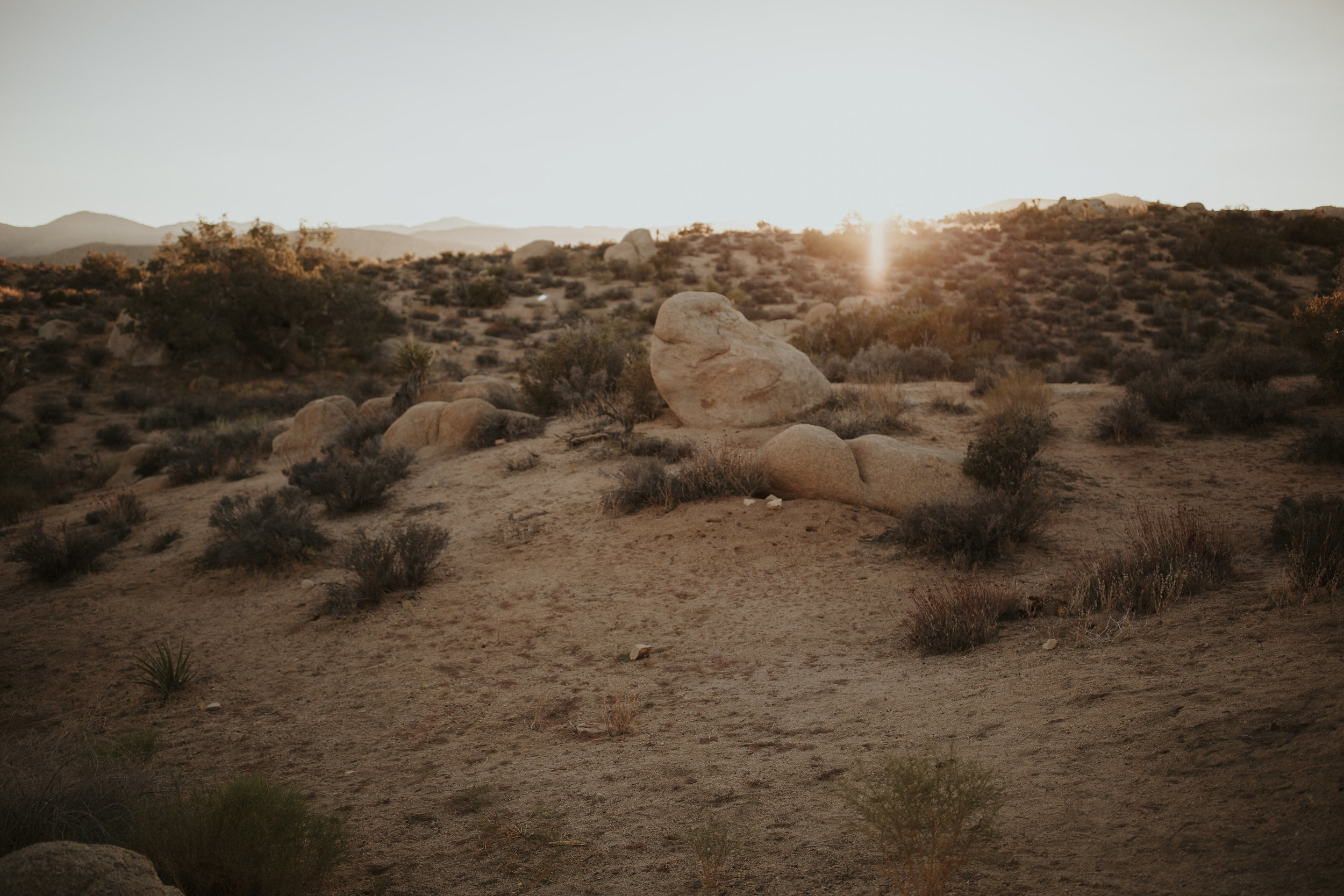dawnphotography-reception-367.jpg