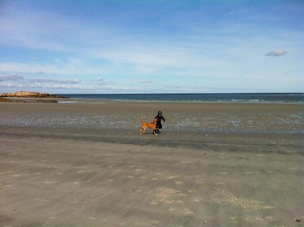 beachrun.jpg
