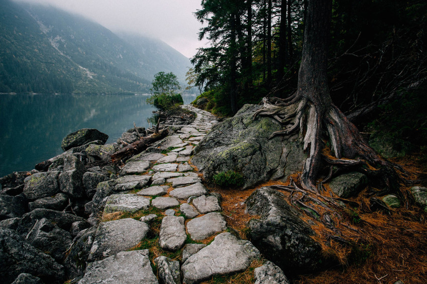 Image credit: Sara Delic, National Geographic Your Shot