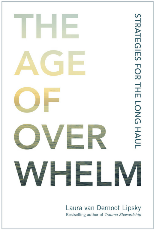The Age of Overwhelm Cover.png