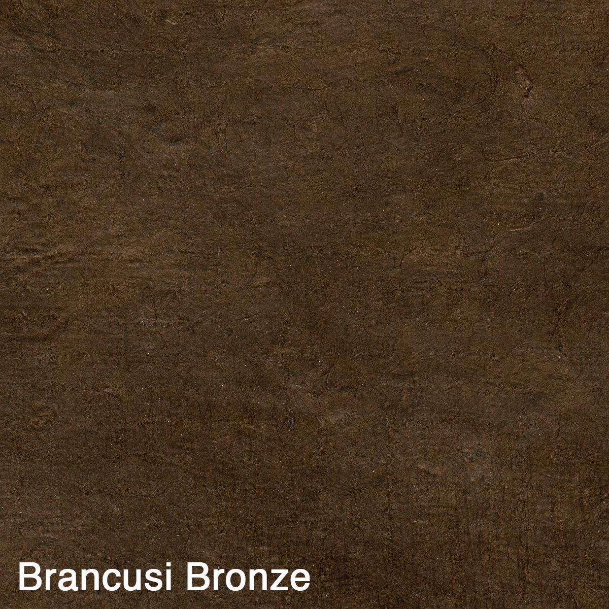 Brancusi Bronze001.jpg