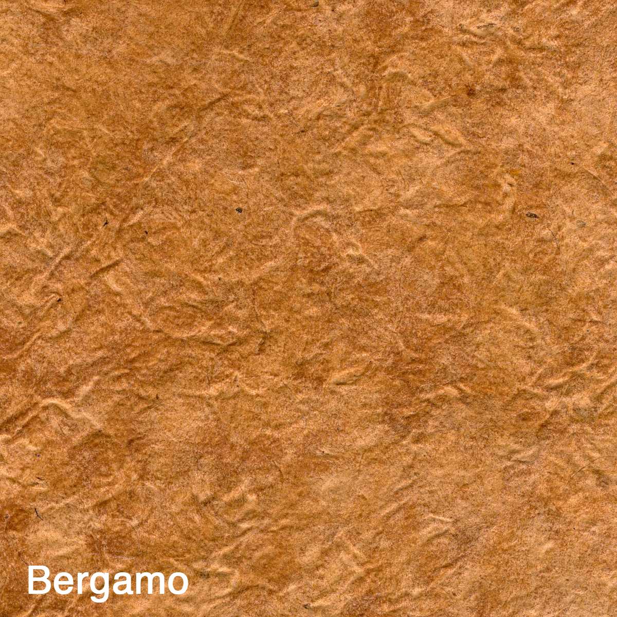 Bergamo002.jpg