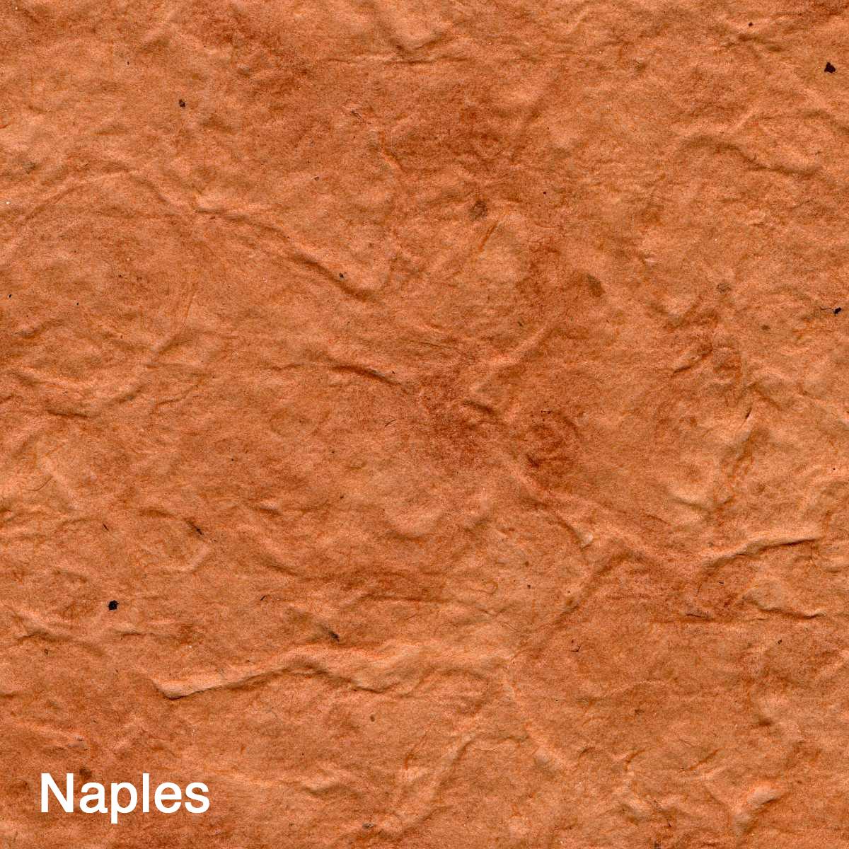 Naples007.jpg