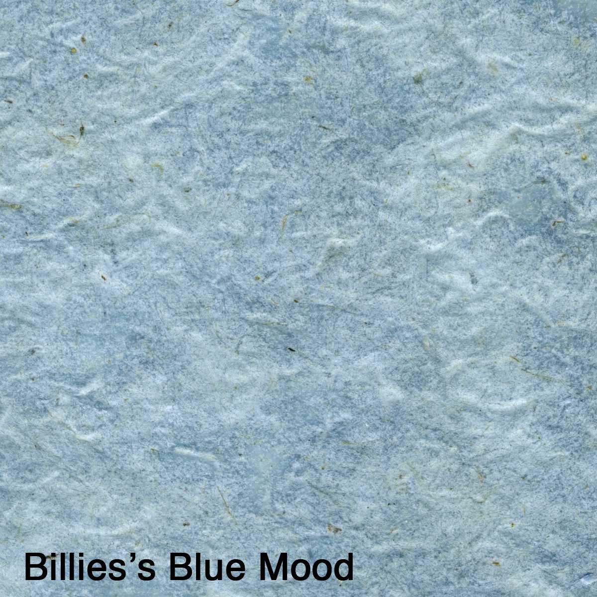 Billie's Blue Mood.jpg
