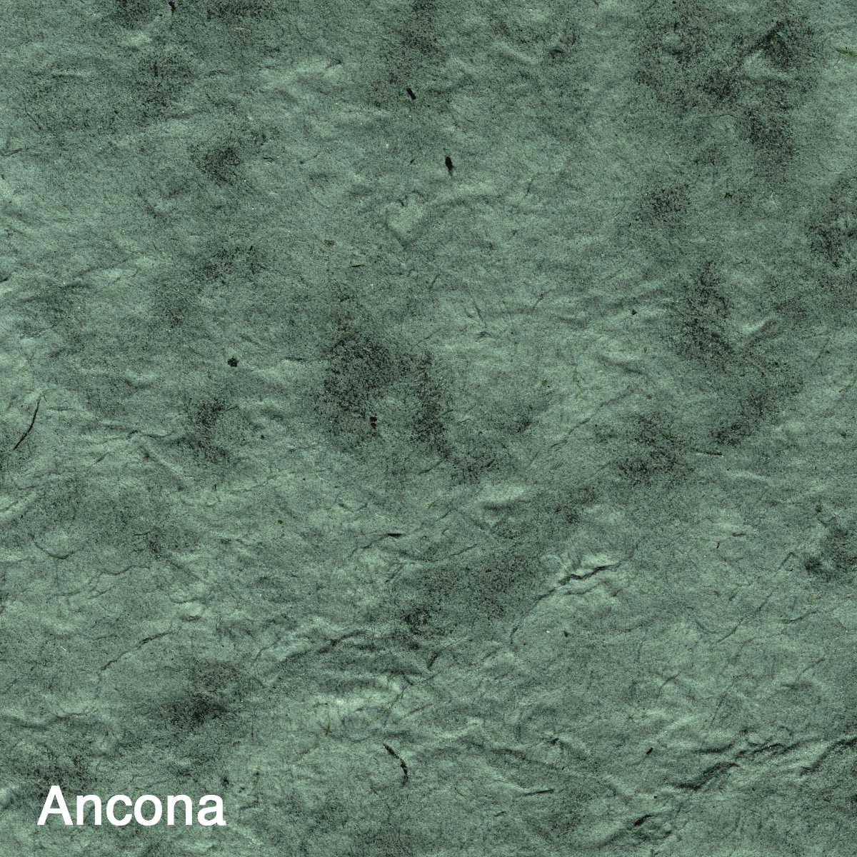 Ancona-2.jpg
