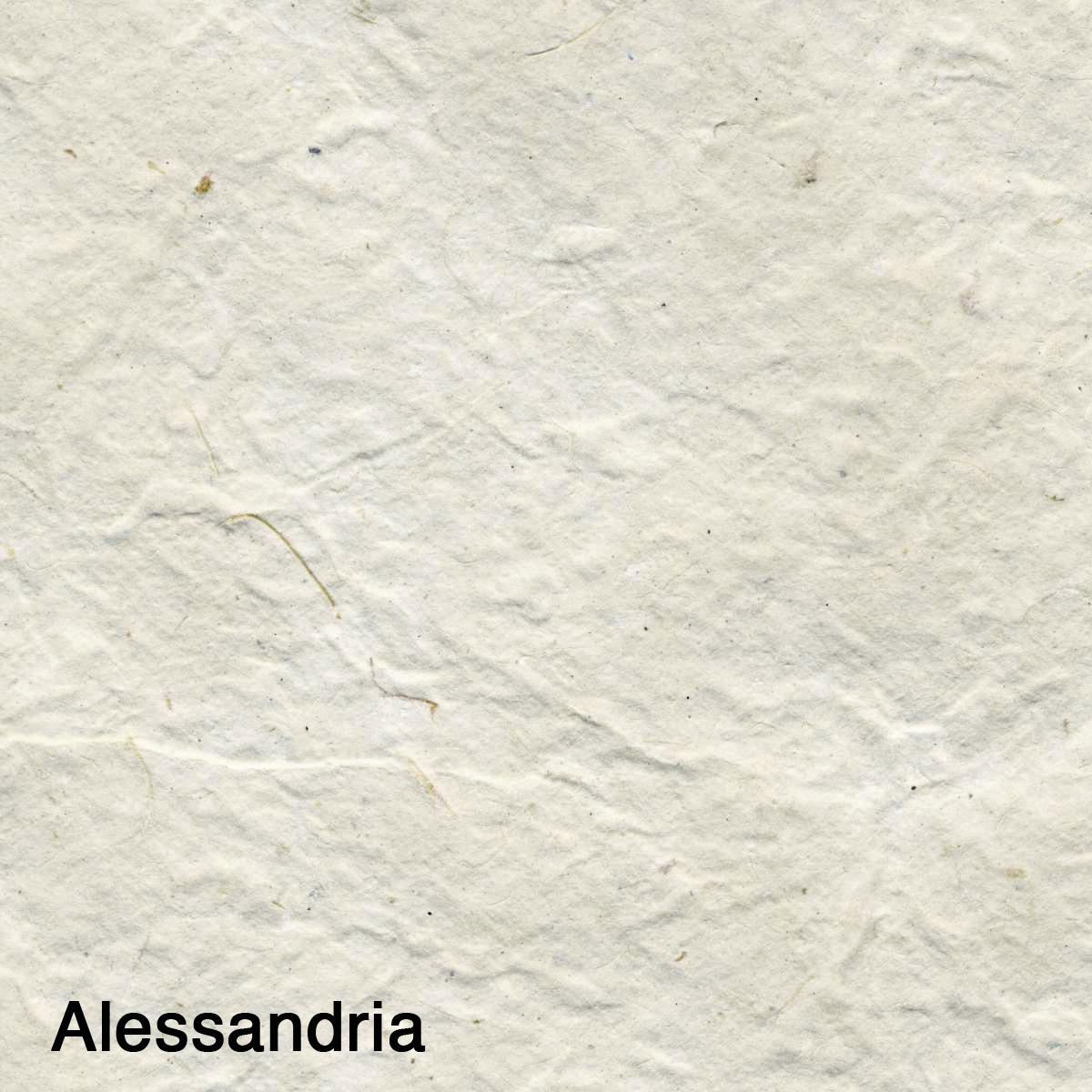 Alessandria003.jpg