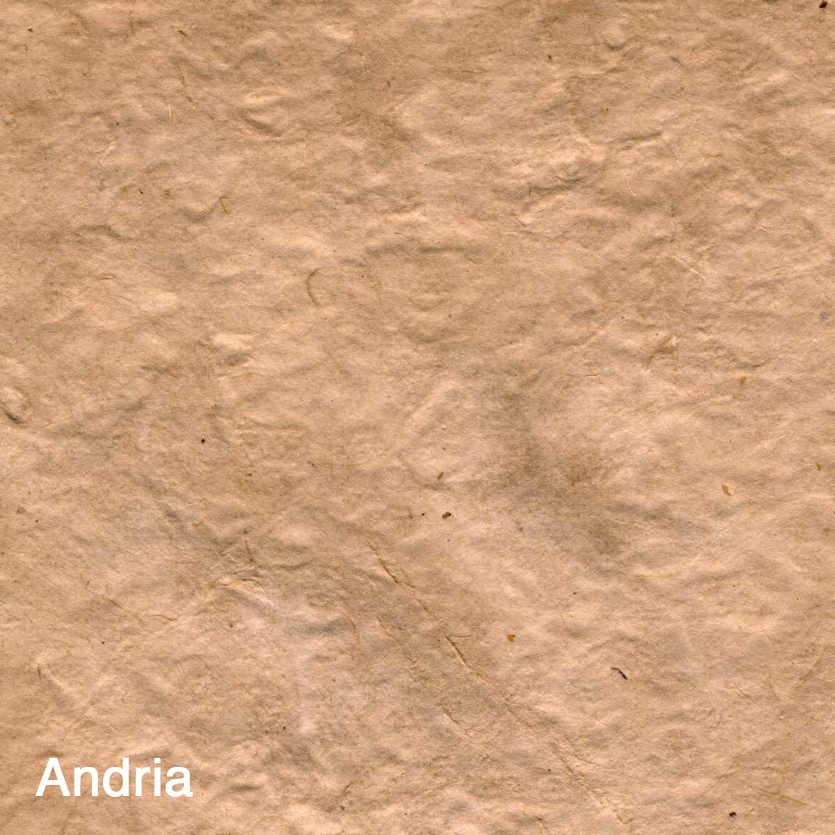 Andria011 copy.jpg